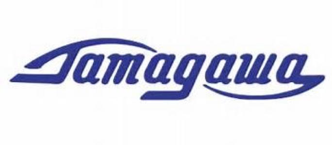 Tamagawa Resolver